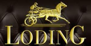 Ekskluzywna marka Loding już w Polsce